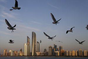 Seagulls fly over the city skyline in Abu Dhabi, United Arab Emirates. (AP Photo/Kamran Jebreili)